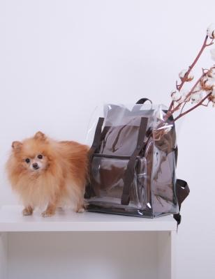 Рюкзак Gemme, прозрачный
